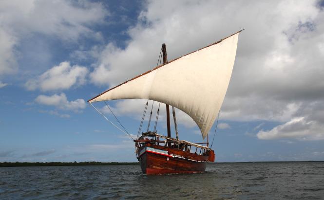 15178-sailing-large